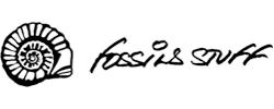 Fossil Stuff Frames