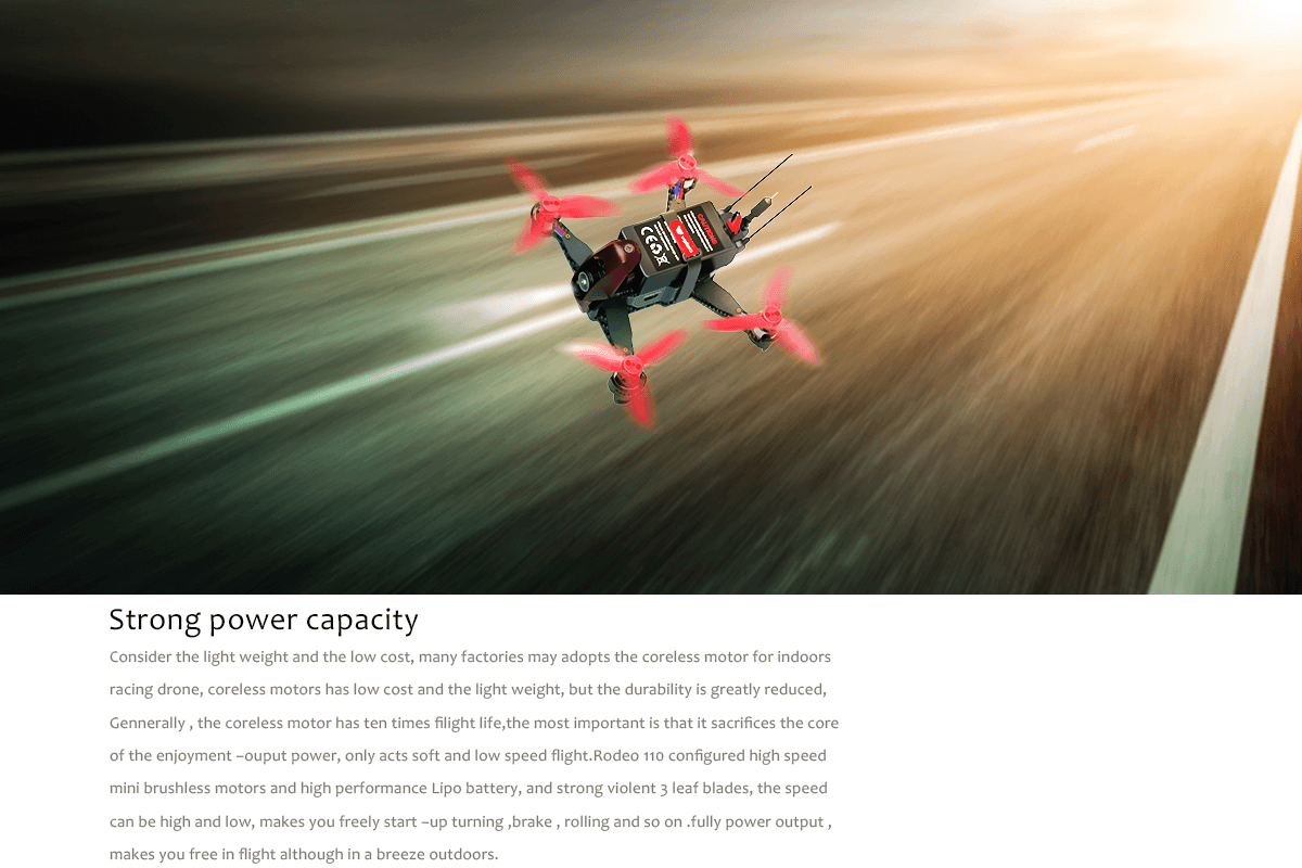 Walkera Rodeo 110 Fast High Performance Drone